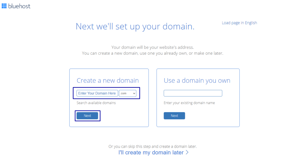 Enter Your Domain Name